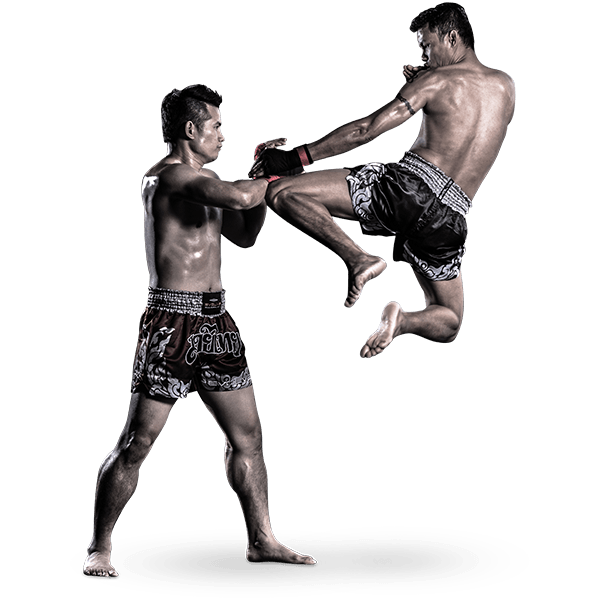 Kettlebell Training For Mixed Martial Arts Brazilian Jiu: Evolve Vacation