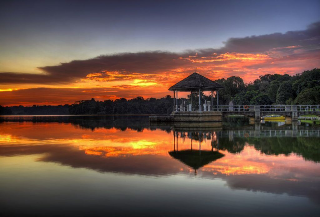 Sunset at the Lower Peirce Reservoir Lake in Singapore