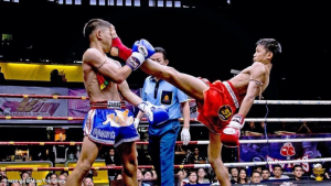 Muay Thai Push Kick Teep