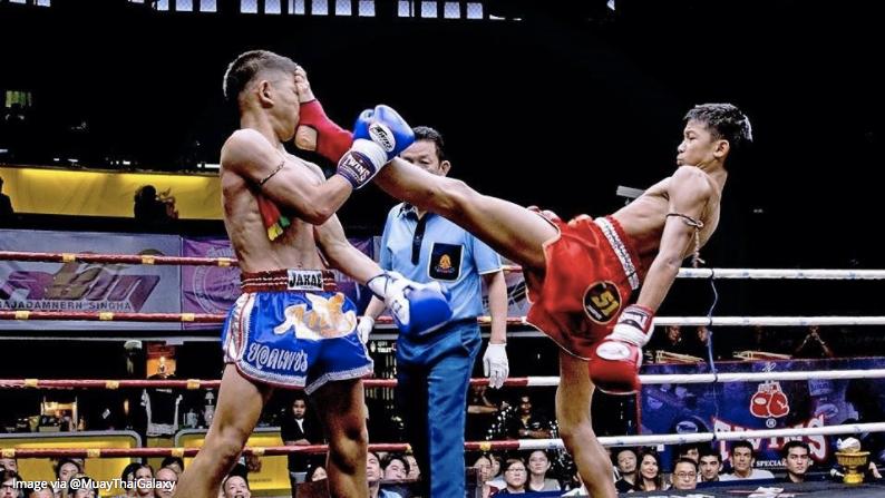 Muay Thai Push Kick Teep