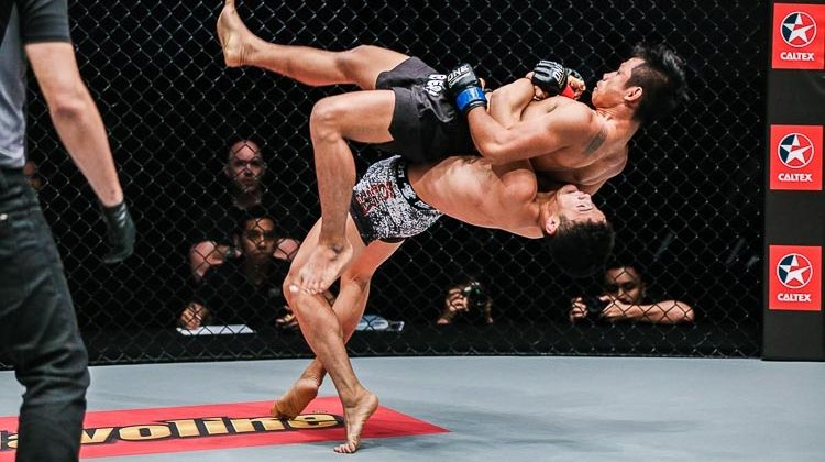 Image result for mma