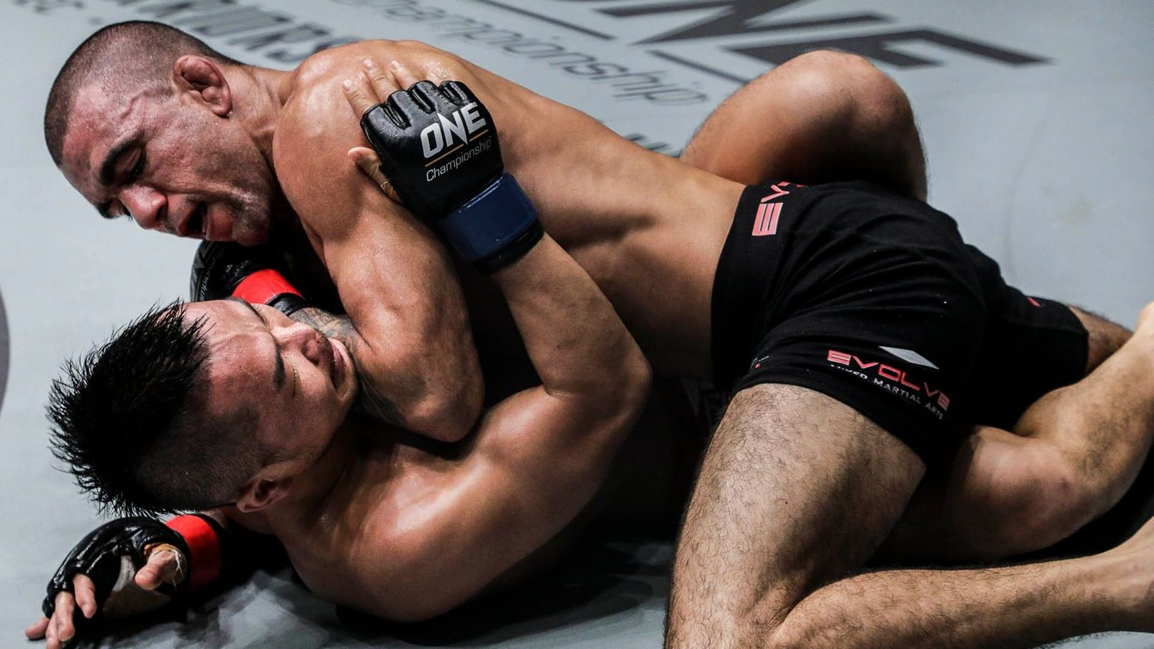 How To Combat A Ground And Pound Specialist In MMA | Evolve