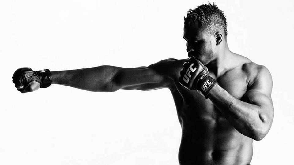 The Heaviest Punchers In MMA History | Evolve Vacation